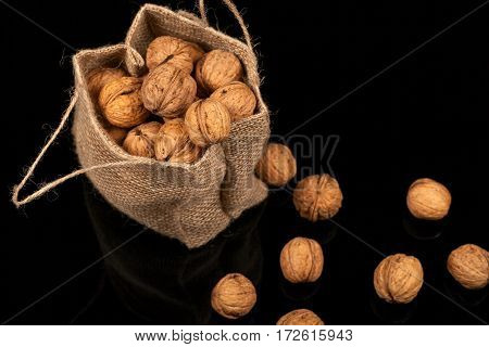 Walnuts in the bag of burlap. Spilling nuts lie on a glossy surface on a black background
