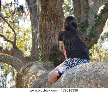 taken from behind girl grand oak tree climber