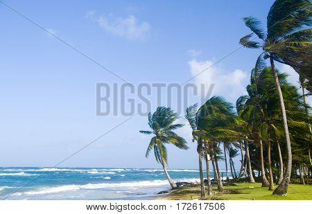 Sally Peachie Beach Big Corn Island Nicaragua Central America on Caribbean Sea