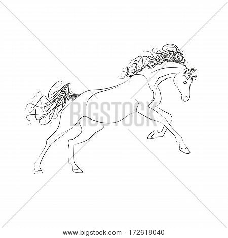 Vector outline drawing horses. The horse gallops, mane and tail fluttering