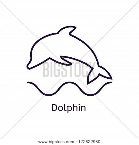 Vector dolphin icon on a white background. Thin line icon for web site, visit card, poster, banner etc.