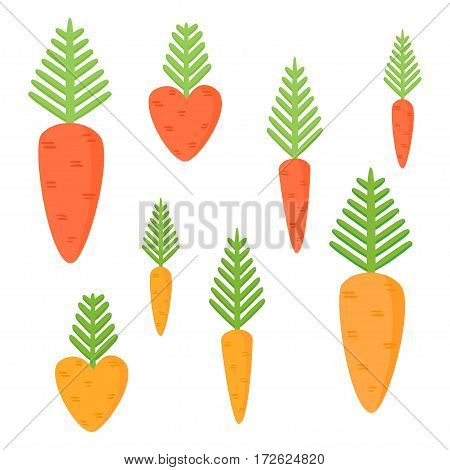 Simple juicy carrots isolated on white background