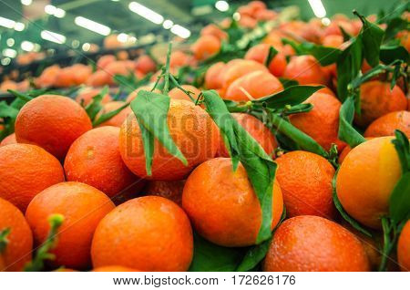 Fresh ripe mandarin oranges with green leaves on retail market display close up high angle