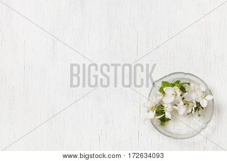 Top view on beautiful apple tree flowers in a glass plate on a white wooden background. Spring apple tree blossom. White flowers. Flat lay. Spring concept.