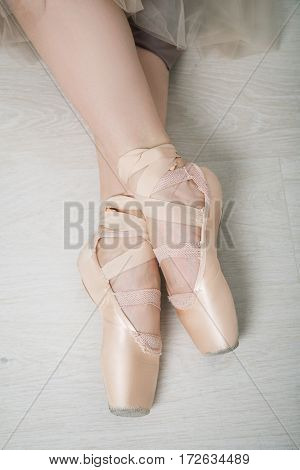Female Legs In Pointes