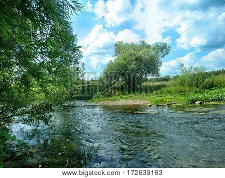 Fast Shallow River Flowing Along The Bushy Shore