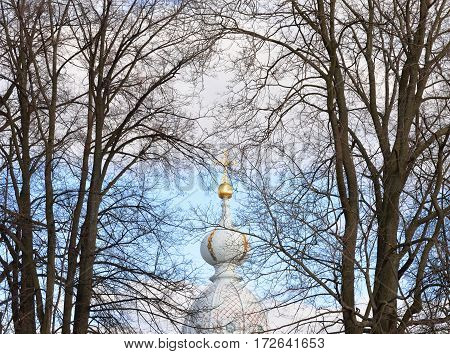Dome of the Church of the Smolny monastery and tree branches at cloud day in St.Petersburg Russia.