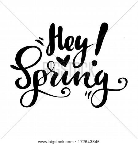Greeting card with phrase: Hey spring. Vector isolated illustration: brush calligraphy, hand lettering. Inspirational typography poster
