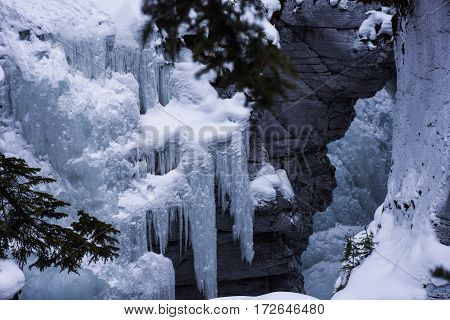 Icicles hanging from the canyon walls of Maligne Canyon in Jasper National Park, Canada