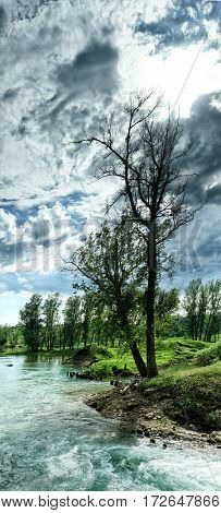 Two Trees On The Banks Of The Rushing River