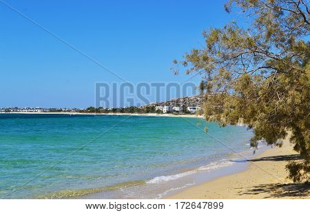 Mikri Vigla beach at Naxos island Cyclades Greece
