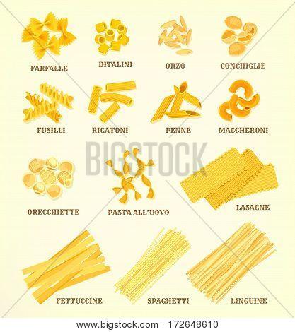 Pasta vector icons of italian farfalle or ditalini, orzo conchiglie and fusilli, rigatoni or penne, maccheroni and orecchiette, pasta all uovo or lasagne, fettuccine, spaghetti or linguine