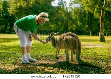 Middle aged woman feeding a kangaroo at the zoo, Australia