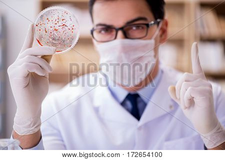 Doctor studying virus bacteria in the lab