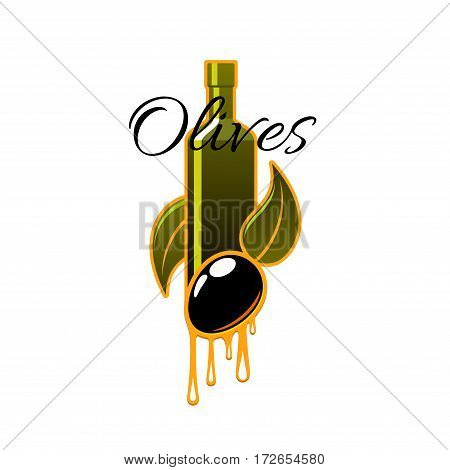 Olive oil of fresh black olives vector icon of bottle and dripping drops, olive-tree branch with green leaves and ripe olive fruits for olive oil product label or emblem