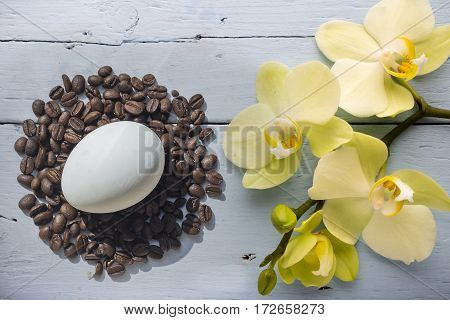 Coffee Beans And Easter Egg With Orchid On Grey Background
