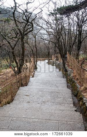 nature trail at Mountain Huangshan in the mist . Anhui China.
