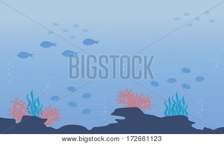 Silhouette of underwater with fish and reef landscape vector