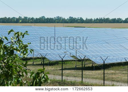 Solar panels in summer field