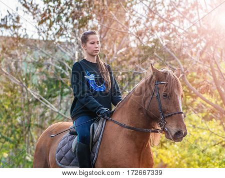 Young beautiful brunette girl rides a horse on a warm and sunny autumn day. Portrait of a pretty young woman on the horse, wearing tall boots and gloves.