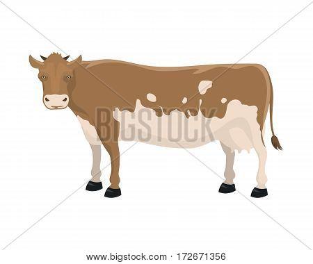 Cow farm animal funny cartoon vector illustration. Cattle mammal nature beef agriculture. Domestic rural bovine horned cartoon buffalo.