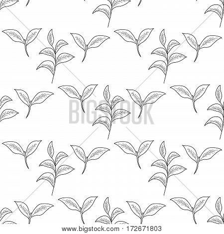 Green tea leaf illustration branch organic hand drawing sketch seamless pattern