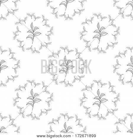 Green tea leaf illustration branch organic hand drawing sketch seamless pattern wreath