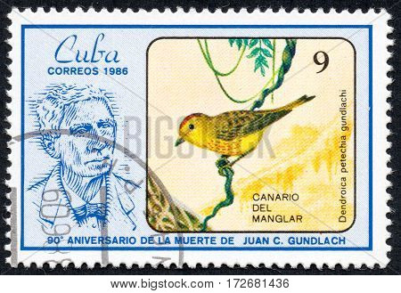 UKRAINE - CIRCA 2017: A stamp printed in Cuba shows a Bird Dendroica petechia guundlachi Canary of the mangrove the series The 90th Anniversary of the Death of Juan C. Gundlach circa 1986