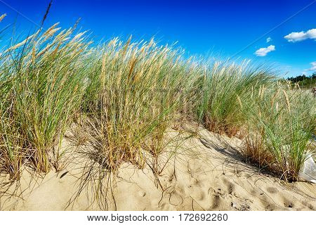 White clouds on blue sky over dunes near sea