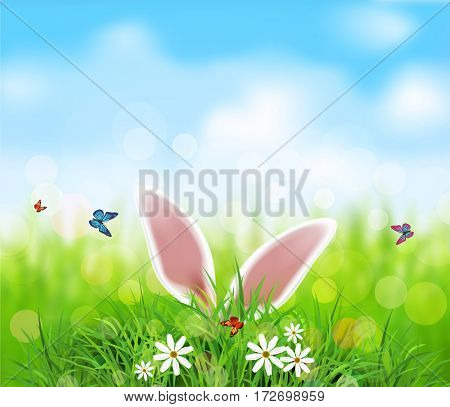 background for Easter. Template. Rabbit ears sticking out of the grass .