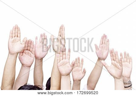 group of people raising their hands isolated on white background.