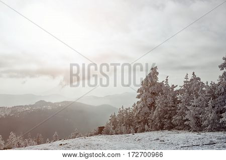 Panorama of the foggy winter landscape in the mountains- Natural landscape