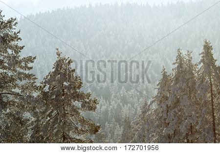 Beautiful view of the winter mountains landscape