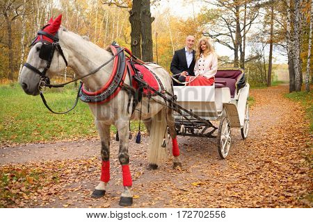Man and woman are in coach with horse and hold reins in autumn park