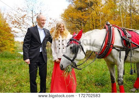 Happy couple stand near horse in red harness in yellow autumn park