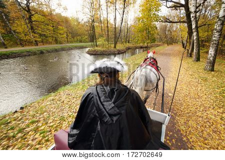 Coachman sitting on seat of coach with horse and holds reins in autumn forest