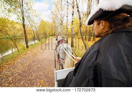 Coachman sitting on seat and manages horse in yellow autumn forest
