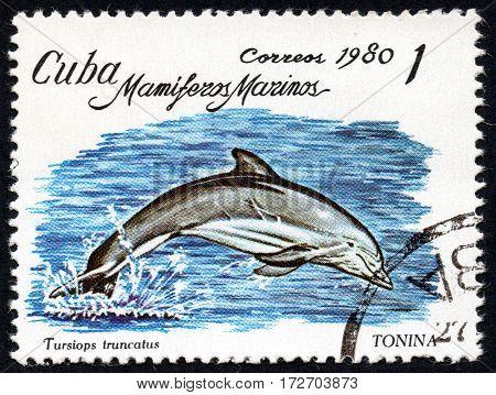UKRAINE - CIRCA 2017: A stamp printed in Cuba shows a dolphin Tonina Tursiops truncatus the series Sea mammals circa 1980