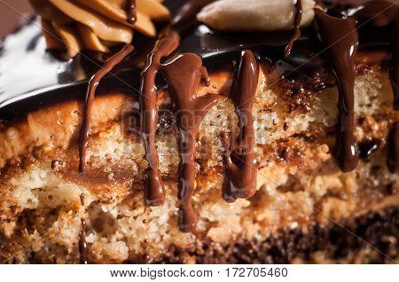 Homemade chocolate cake with walnut and poppy seeds