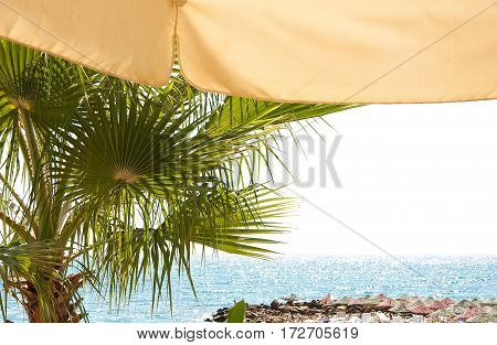 the view of the sea. Palma. the edge of the parasol. horizon in the sunlight. beach