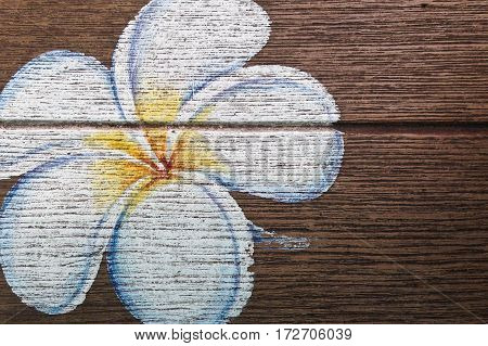 frangipani flower paint on the wood pattern background