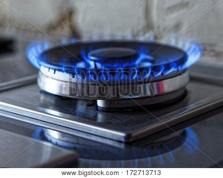 Flames of blue gas. Close up burning fire ring from a kitchen gas stove. Tinted photo.