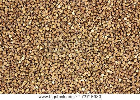 buckwheat grains background tasty and healthy, natural