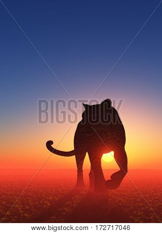 Leopard goes on a field at sunset.,3d render