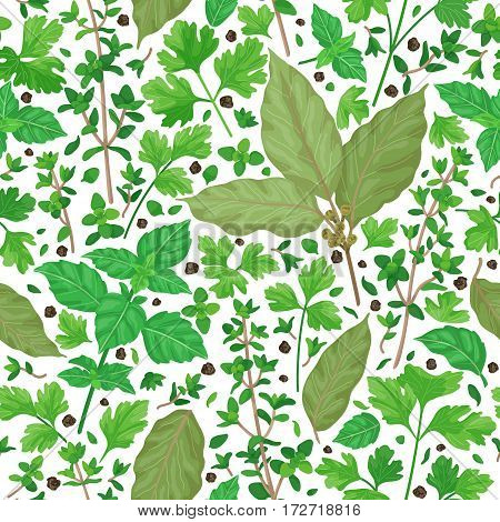 Seamless pattern with flavoring green herbs and spices. Thyme bay leaves parsley basil scattered leaves and pepper isolated on white. Cooking theme.