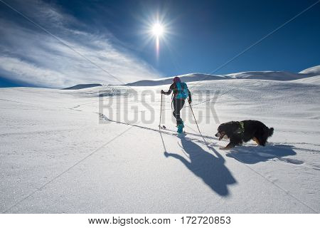 Girl Makes Ski Mountaineering With His Dog In A Fairy-tale Place