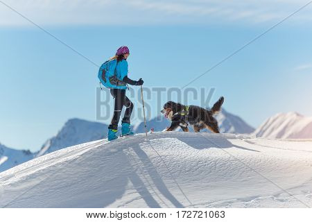 Girl On Top Of A Mountain With Skis And His Dog