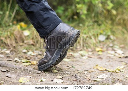 Man Wearing Shoe While Trekking On Forest Trail