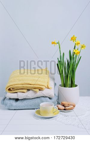 Indoor table setting. Narcissus flower in a pot with a pile of knitted sweaters cookies and tea cup.