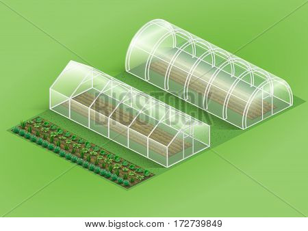 Set of greenhouses for plants. Facilities farm and garden with plants vegetables. Vector graphics